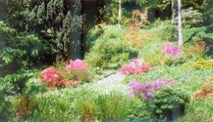 BAM.Benvarden Garden, Co Antrim