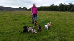 Charmayne on a pet walk