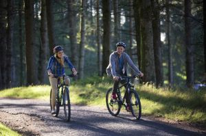 Davagh_Forest_Trails