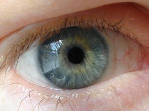 Human eye looking straight with blue iris